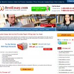 Besty-essay.us Review